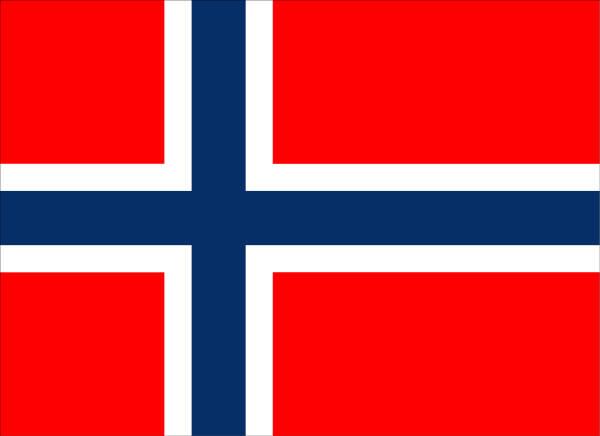 Анкета Для Визы В Норвегию Образец Заполнения